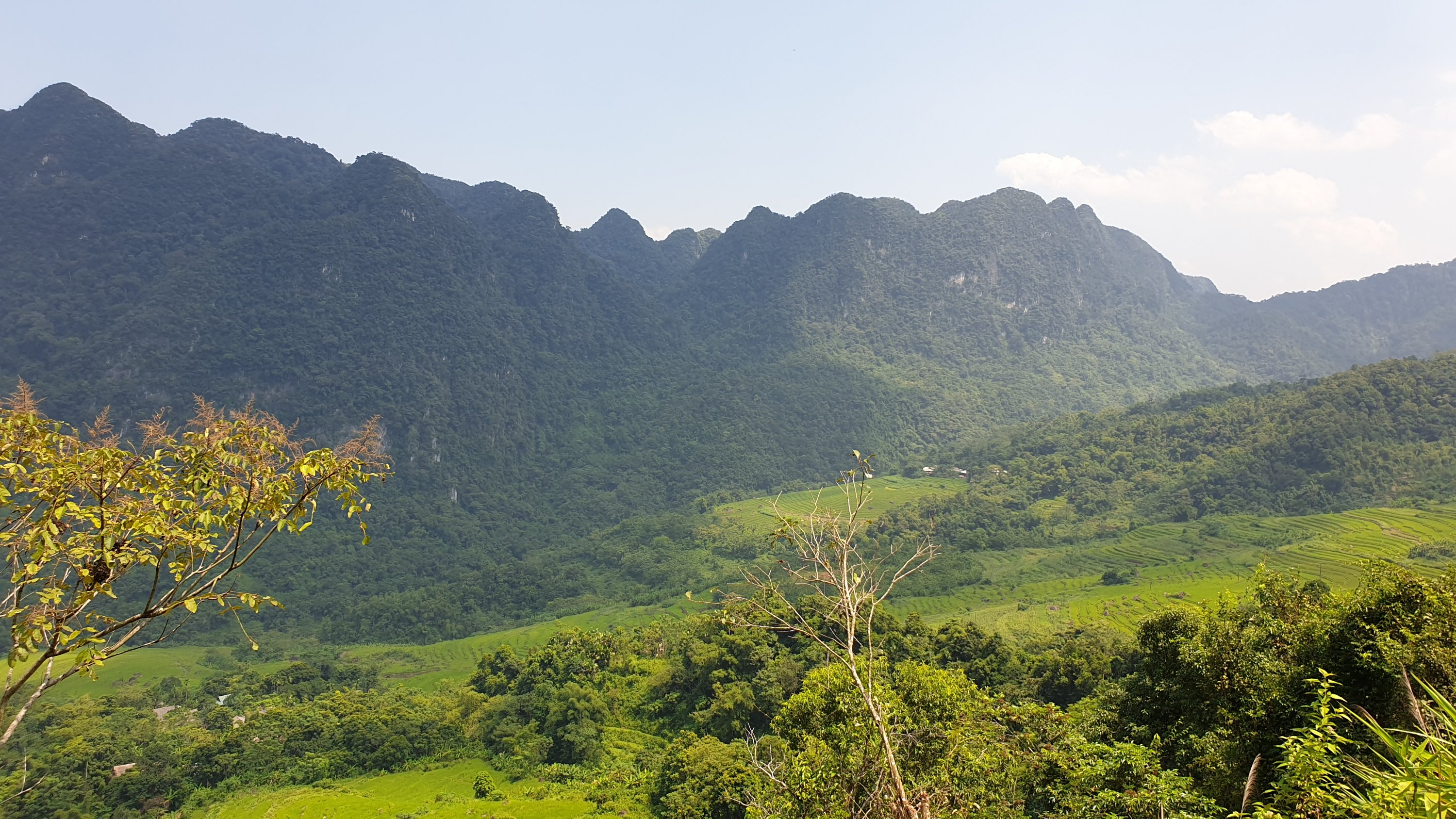 Pu Luong Nature Reserve - View of the valley and mountains in the distance with rice fields and trees